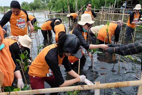 CSR 'Menjaga Negeri': Mangrove Planting in Jakarta